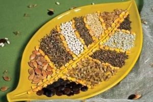 обработка семян перед посадкой в домашних условиях