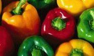 Выращивание рассады перца