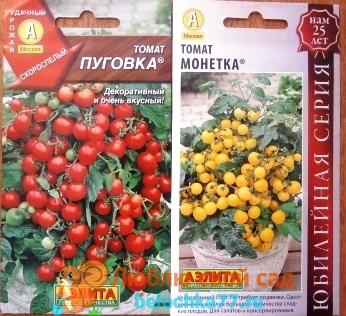 Как вырастить томаты на подоконнике