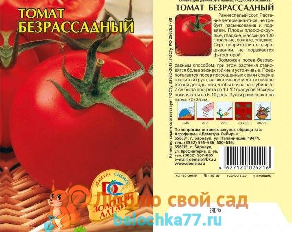 Сорт помидор Безрассадный