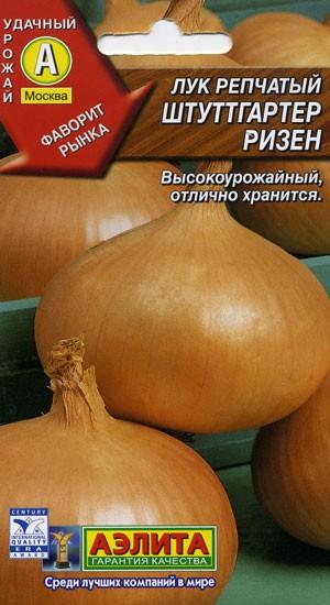 Сорта лука репчатого для Урала