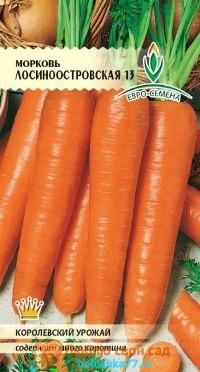 Фото лучших сортов моркови
