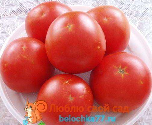 помидоры лорели