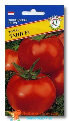 Сорт помидор Таня