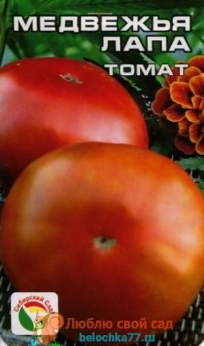 Сорт помидора Медвежья лапа