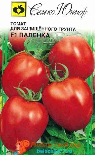 Урожайные сорта для теплиц
