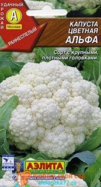 Сорт цветной капусты Альфа