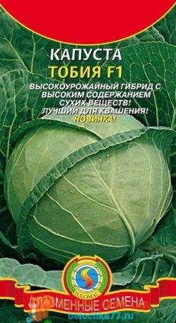 Лучшие сорта капусты белокочанной с фото и названием