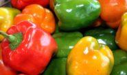 Сладкий болгарский перец: сорта с фото, названием, описанием