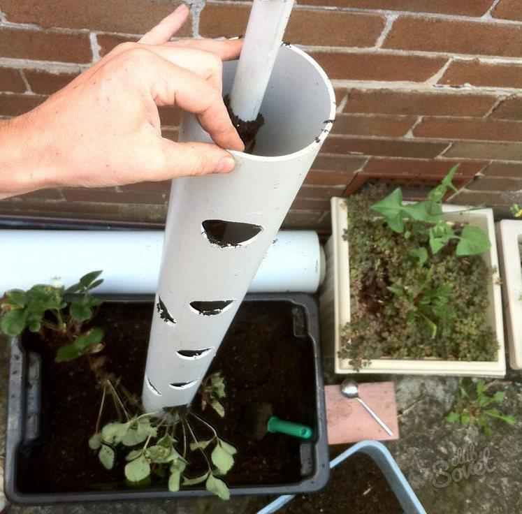 Вертикальная клубника выращивание 75