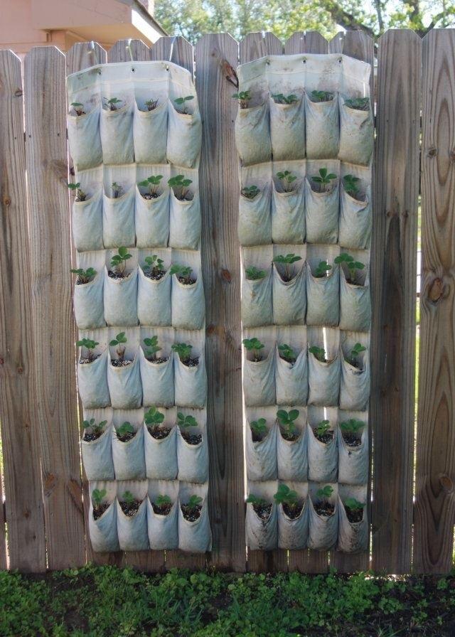Как вариант посадки в мешках- клубника в кармашках