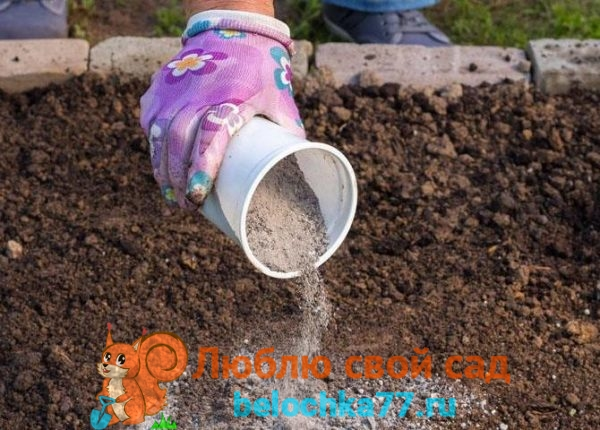 Как использовать золу как удобрение для растений