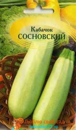 Сосновский кабачок