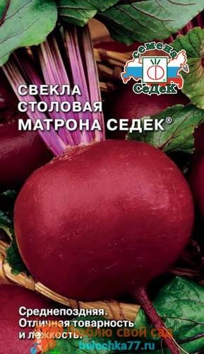 Матрона Седек
