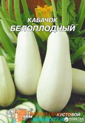 Сорт кабачка Белоплодные