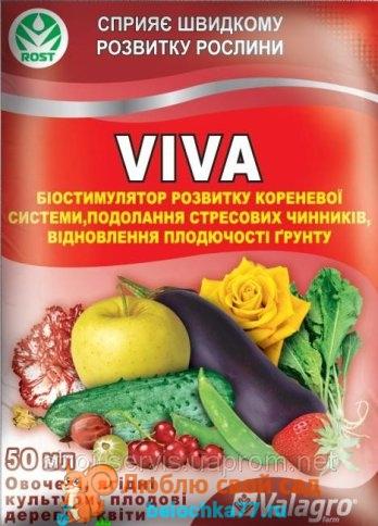 Вива (Viva)