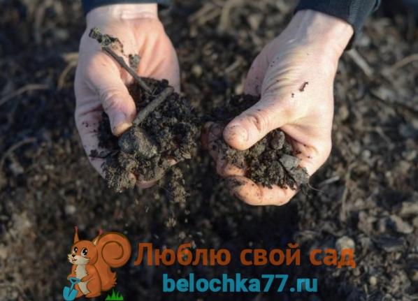 Подготовка земли к посадкам
