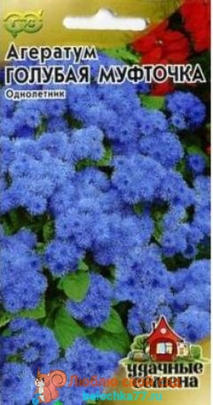 Голубая муфточка