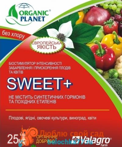 Свит (Sweet)