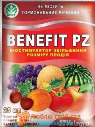 Бенефит (Benefit)