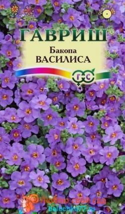 Бакопа (сутера) Василиса