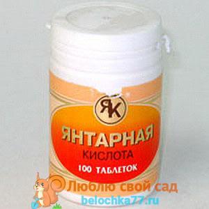 Меры предосторожности к применению янтарной кислоты