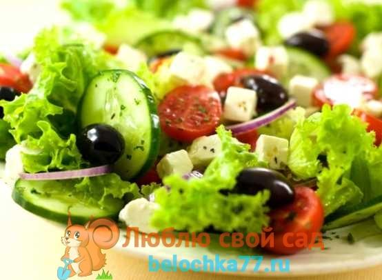 Польза и вред салатов
