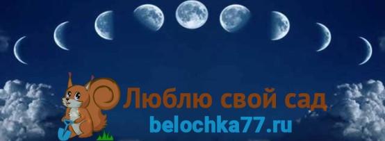 Лунный календарь садовода на сентябрь 2017 года