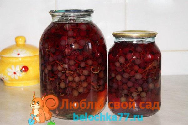 Лучшие рецепты компота из винограда