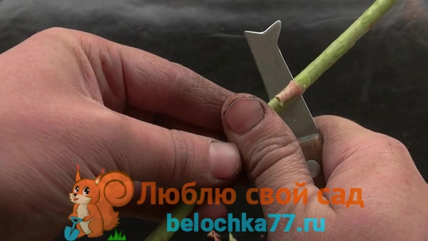 Инструменты и обвязочный материал