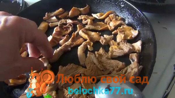 Как готовить ежевик правильно