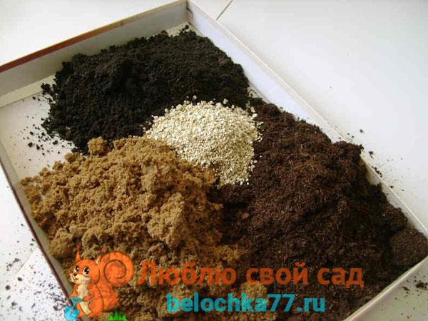 Подготовка почвенной смеси для рассады