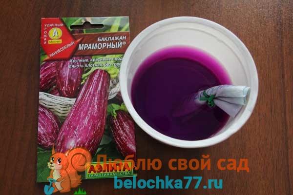 Обработка семян раствором марганцовки