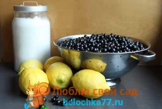 Желеобразный десерт из смородины с лимоном