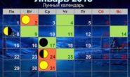 Лунный календарь на январь 2018 года для садоводов и огородников