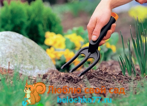Благоприятные и неблагоприятные дни в апреле для посадок семян овощей и цветов