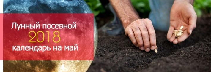 Лунный календарь садовых работ на май 2018 для садоводов, огородников, цветоводов (таблица)