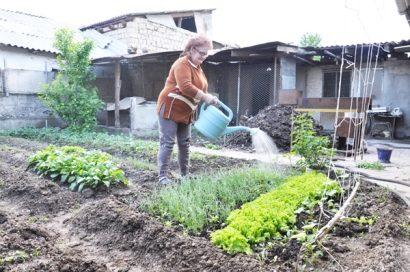 Лунный посевной календарь садовода и огородника на май 2018 года