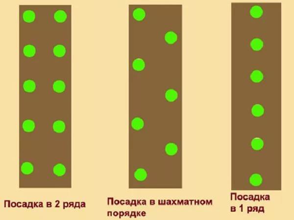 Выбор схемы посадки