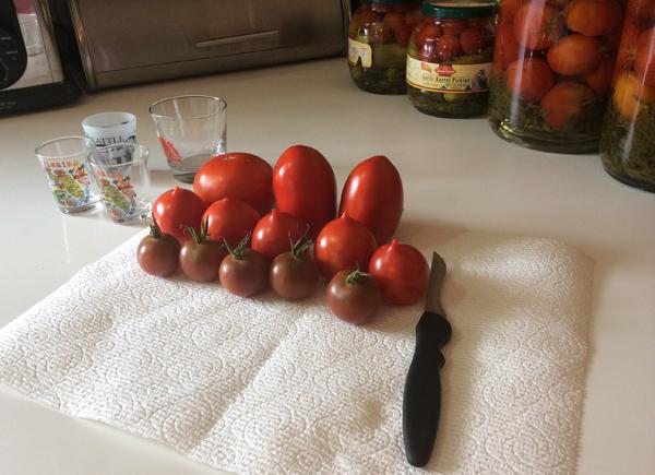 Подготовка помидоров к заготовке