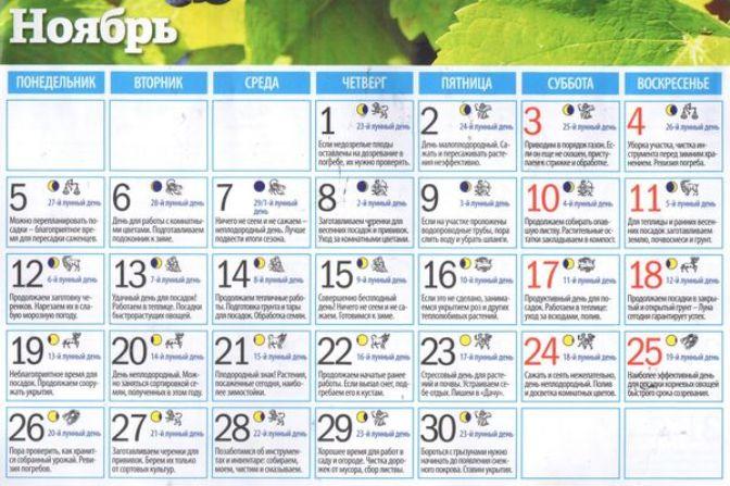 Лунный посевной календарь садовода и огородника на ноябрь 2018 по датам на ноябрь (таблица)