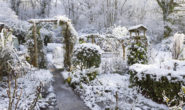 Лунный посевной календарь на январь 2019 года для садоводов