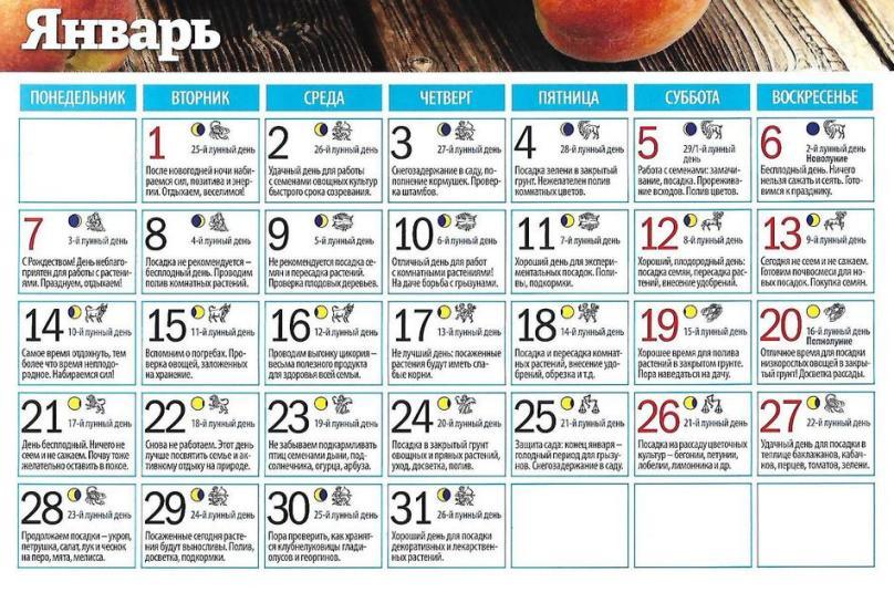 Лунный посевной календарь для садоводов, огородников, цветоводов на январь 2019 - таблица