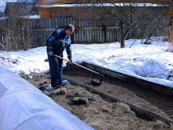 Что делать садоводу в марте