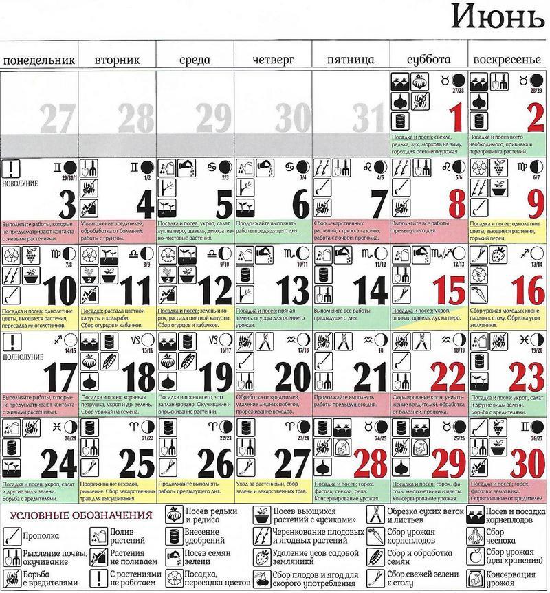 Лунный посевной календарь на июнь 2019 для садоводов, огородников, цветоводов таблица