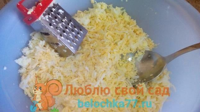 Как готовить кабачковые рулетики